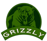 Grizzly Bedchair XL FCS (Flat Compressed System)_