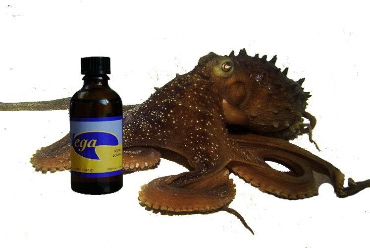 Mega Squid & Octopus, 500 ml